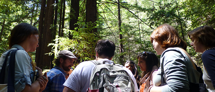 UCSC Campus Reserve Steward leading a class hike in the coast redwood forest