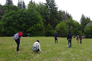 Students create a transect for insect study during ENVS 100 field trip